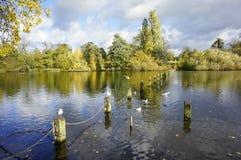 hyde πάρκο Στοκ Εικόνες