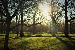 hyde πάρκο Στοκ εικόνες με δικαίωμα ελεύθερης χρήσης