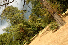hyde london park Fotografering för Bildbyråer