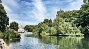 hyde london park Arkivbild