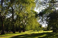 hyde london park uk Arkivbild
