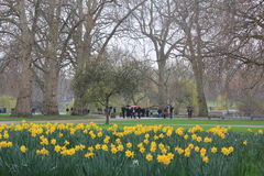 Hyde Parc in London city Royalty Free Stock Image