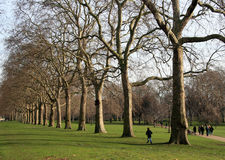 Hyde park. Famous Hyde park in London stock image