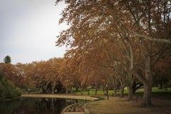 Hyde Park Fotografía de archivo