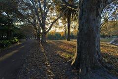Hyde Park Image libre de droits