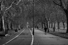 Hyde park. A black and white photo of one of London& x27;s most iconic parks Royalty Free Stock Images