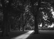 Hyde Park. Clear path inside Hyde park Stock Photos