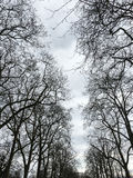 Hyde Park. Cloudy day in Hyde Park Stock Photo