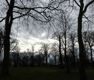 Hyde Park. Cloudy day in Hyde Park Stock Photography