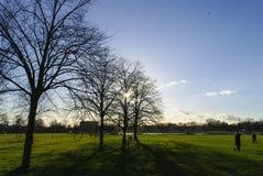 Hyde Park en la luz de la tarde Foto de archivo