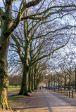 Hyde Park Footpath Royalty Free Stock Photography