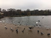Hyde park London photos 7. Hyde Park is a Grade I-registered major park in Central London. It is the largest of four Royal Parks that form a chain from the Royalty Free Stock Image