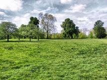 Hyde Park, London. Hyde Park - Kensington Gardens in London, UK - high dynamic range HDR Royalty Free Stock Photography
