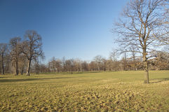 Hyde Park, London Royalty Free Stock Image