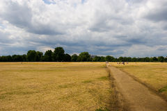 Hyde Park, London. Lawn in Hyde Park, London Royalty Free Stock Photos