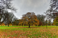 Hyde Park - London Royalty Free Stock Photo