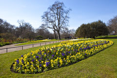 Hyde Park in London Stock Photos