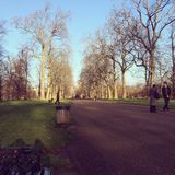 Hyde Park London United Kingdom Royaltyfri Bild