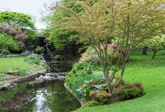 Hyde Park London, vattenfall i vårblomning Fotografering för Bildbyråer