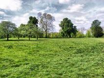 Hyde Park, Londres Fotografía de archivo libre de regalías