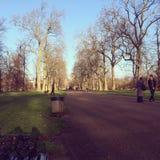 Hyde park Londyn Zjednoczone Królestwo Obraz Royalty Free