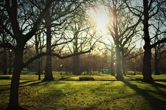 Hyde Park. Look on the Hyde Park, London Royalty Free Stock Images