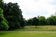 Hyde Park, one of the largest parks in London. LONDON, ENGLAND - JULY 23, 2016: Nature of the Hyde Park, one of the largest parks in London, and one of the Royal Stock Image