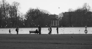 Hyde park pond. A black and white picture london hyde parks pond Stock Photo