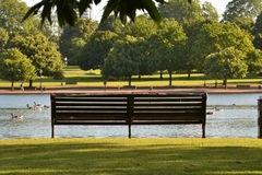 Hyde Park Serpentine. Empty wooden bench in London Hyde Park with Serpentine lake in front of it and trees on the far shore Royalty Free Stock Image
