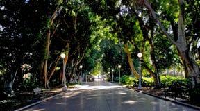 Hyde Park Sydney image libre de droits