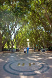 Hyde Park Sydney. A fig-lined avenue in Hyde Park with green trees, lamps, persons and golden letters sign HP on the pavement Royalty Free Stock Photo