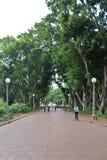 Hyde Park, Sydney Stock Image