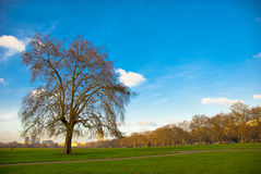 Hyde Park, UK. Stock Images
