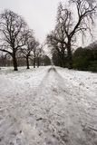 Hyde park in winter. A winter scene of Hyde Park in London Stock Images