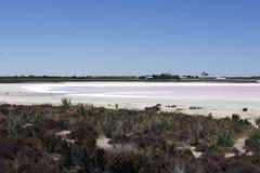 在Hyden和阿尔巴尼,WA,澳大利亚之间的桃红色盐湖 免版税图库摄影