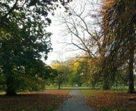 Hydepark tijdens de herfst royalty-vrije stock foto's