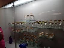 Free Hyderabad Salarjung Museum Photo Near Charminar Stock Images - 174917504