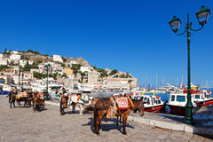 hydra της Ελλάδας Στοκ Φωτογραφίες