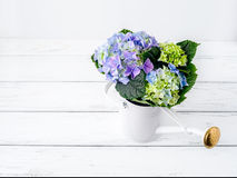 Hydrangea στην αντλία Στοκ Εικόνα