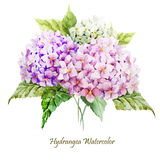 Hydrangea bouquet Royalty Free Stock Photos