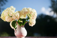 Hydrangea bouquet of flowers in a white jug. Flowers on a wooden table, are lit with the sunset sun against the background of trees and the blue sky Stock Photo