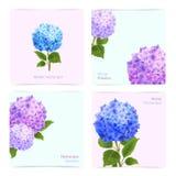 Hydrangea Cards Set Royalty Free Stock Photo