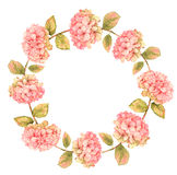 Hydrangea floral wreath Royalty Free Stock Photos