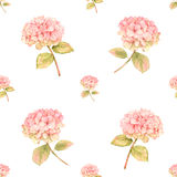 Hydrangea flower in bloom - seamless pattern Stock Photos