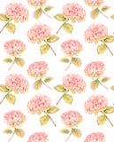 Hydrangea flower in bloom - seamless pattern Royalty Free Stock Photo