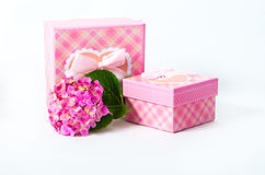 Hydrangea flower and gift box Royalty Free Stock Photography
