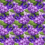 Hydrangea flowers background, seamless pattern Stock Images