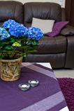 Hydrangea flowers in a living room Stock Photography