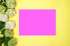 Hydrangea flowers and pink paper card note on vivid yellow background. royalty free stock image