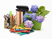 Hydrangea flowers and school subjects Stock Photography